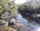 Venta campo 22 hectáreas Ruta 12 a 12 kms de Pueblo Edén