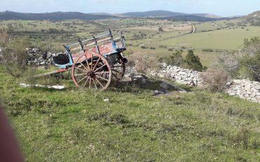 Venta campo 137 hectáreas a 8 kilómetros de Pueblo Edén, Maldonado