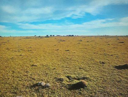 Venta campo 57 hectáreas a 12 kms de San Carlos y 28 kms de Punta del Este